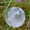 Crystal Ball 2010