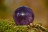 Crystal Ball 2304